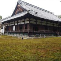 京都東山 青蓮院門跡散策
