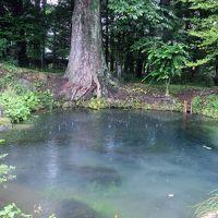 忍野八海 底抜池は有料施設の最奥に佇み ☆榛の木林資料舘は一見の価値