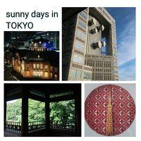 東京の夏休み  2018年 8月