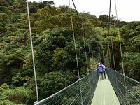 コスタリカを巡る!幻の鳥、蝶、バジリスク、ウミガメの産卵と子亀の誕生、熱帯雨林トレッキング、ボートクルーズ、温泉、様々な生物と自然探訪に、おまけにストバリケード突破までついて、コスタリカの豊かさを満喫 vol�恐怖の吊り橋と熱帯雲霧林