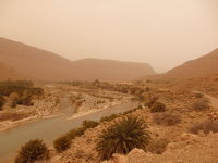 モロッコの旅 4日目(1)