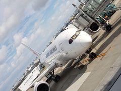 JL91便とRS754便 搭乗記