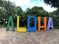 Summer Vacation 2018 in Maui & Oahu. マウイ島でのんびりステイ & オアフではハリケーン騒動!� マウイ編前半