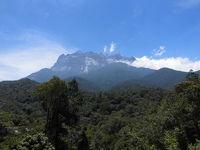 キナバル山登山とオラウータン探し