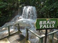 セント・アン タートル・リバー・フォールズ & ガーデン (Turtle River Falls and Gardens, St.Ann)