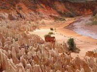 マダガスカルゆったり周遊12日間のツアーに参加 行ってきました! �2 ディエゴ スアレス観光編(ディエゴ スアレス〜レッドツインギー〜灰色ツインギー)
