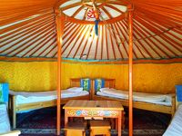 エネルギー満ちるゴビ砂漠〜モンゴル2