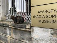 迷ったらイスタンブールに行くべき3つの理由
