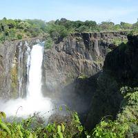 南アフリカ・ケープタウンとザンビア・ジンバブエ・ヴィクトリアの滝 8日間