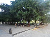 ハバナ 旧市街その3 (Plaza de Armas & Plaza de la Catedral, La Habana Vieja)