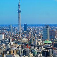 日本橋-2 東京都心大展望・スカイツリーが正面に ☆日本橋三井タワー38階から