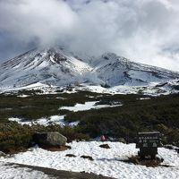 どこかにマイルで1泊2日、富良野・美瑛・旭岳温泉の旅〜2日目〜