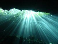 カリブ海とセノーテでダイビング