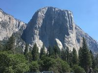 3世代サンフランシスコ旅行�ヨセミテ国立公園�