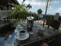 セントアンドリュー キングストン郊外 山の上でコーヒーその3 (Strawberry Hill, Irish Town, St. Andrew)