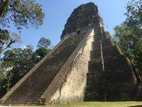 世界遺産グアテマラ� ティカル遺跡