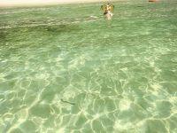 もしも?    個人旅行で、コタキナバル へ  行ったならば 〜〜     島へ 行かなくては なりませぬ 〜〜  ただし、悪人に  ご注意 下さいませ !   2018