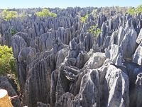 マダガスカル モロンダバ−ベクパカ ツィンギー・ド・ベマラハ国立公園