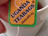 ウガンダ 旅行記
