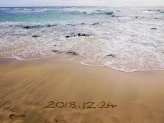 ほぼ初ハワイ☆ミーハーに旅する3泊5日 その2 カカアコ・出雲大社・ハロナ・カイルア・この木なんの木〜日帰りツアー その後はハワイグルメ♪