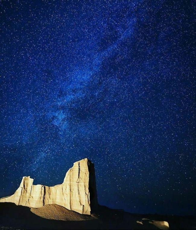 ルート砂漠の画像 p1_20