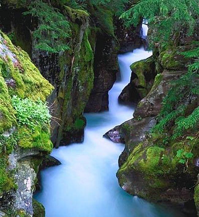 グレイシャー国立公園の画像 p1_34