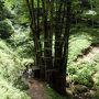 子持ち桂  樹齢は不明ですが、樹高30m、周囲7mほどのこの桂は、 一本の親株から50数本にも分かれた株立ちとなっていることから、「子持ち桂」の名で呼ばれています。 中心部にあった親株はすでに枯れ朽ちて空洞になっているそうです。 この木の葉を持ち帰り、床の下に敷くと子宝に恵まれるという言い伝えがありそうです。