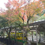 高尾山のケーブルカー乗り場。1時間後の8時営業です。 子供の頃来たきり30年ぶりくらいに訪れました。所々紅葉がきれいです。