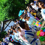 八坂神社へ行こうとすると 花傘娘が スタート位置へ行かれるので この先へ行かず..