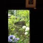 古民家の美術館の外周には、「あじさいの小径」と呼ばれる100種類以上の紫陽花が咲いています。 館内の「あじさい展」は紫陽花をテーマとした多彩な展示がありました。