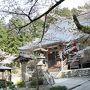 山形と言えば山寺と思っている私。  ちょうど満開ですよ?と言われて予定にはなかったけど早起きしていってみました 階段には苦労したけど、桜が咲いているのは参道付近だけだった…