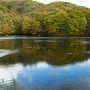 2015.10.8 曲沢沼。 紅葉にはまだ少し早いけれど、このくらいが好きかな?