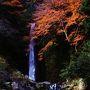 12月に入っても紅葉が残る養老の滝