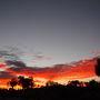前日の日の入りは残念な結果に終わったので、日の出は見たい!と早起きしたものの、ホテルを出ると既に空は明るくなり始めている・・・ タリングル・ニャクンチャク・サンライズ・ビューイングエリアTalinguru Nyakunyjakuという舌噛みそうな展望台に行くと、既に30?40人くらいの人が待っていました。 燃えるような赤い空に黒い木の影。朝焼けだけで胸がいっぱいに。