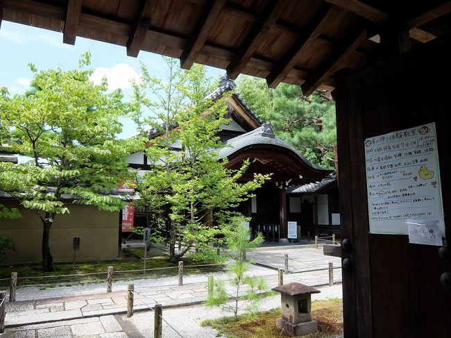 狩野松栄の画像 p1_37