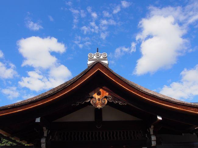 狩野松栄の画像 p1_25