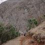 まずは山道を登り、梅林最高地点へ向かいます。 (この写真は振り返って下の方を見ています)