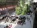 アトーチャ駅までタクシーで。  大きな駅です。池に亀が沢山いるのでビックリです。巨大な温室のようです。