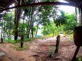 「原住民の家訪問」...というプログラム。  まあ....普通の木の生い茂った....ただの島....