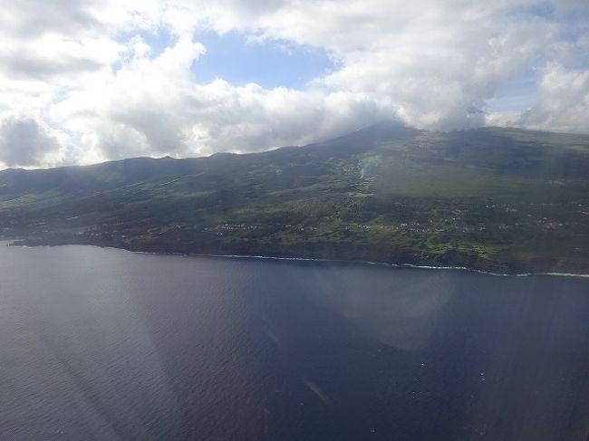 ピコ島の画像 p1_39