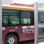 最終日も、バス一日券で移動します