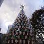 もうクリスマスツリーが飾ってあるんですね!