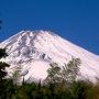 帝人アカデミ−富士研修センタ−からの富士山。 センタ−の裏庭から頂上付近が見えた。