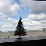 12月12日(火)1日目  お天気ですが、今日はすご〜く寒い。 雲が厚いけど飛行機揺れるかなぁ。