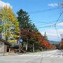 軽井沢はもう紅葉が始まってました