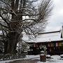 高山陣屋の前を通り駅周辺を歩いてから飛騨国分寺にやってきました。境内の中はかなり雪が積もっていましたが本殿へ続く道は除雪されていました。樹齢1200年を超える大銀杏が雪を被って美しい姿になっていました。