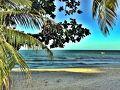 ペナン島3日目。  バトゥ・フェリンギの安宿ドミトリーで快眠。  朝7時頃起床して、さっそくビーチまで散歩にでかけます。  朝の海は静かで好きです。