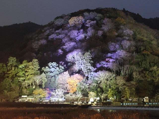 日本の冬は美しい! 冬の京都で訪れるべき絶景スポット