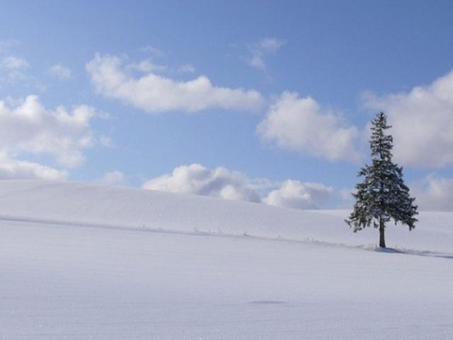 """外国人旅行者にもすすめたい!日本の""""冬の絶景""""スポットTOP10"""
