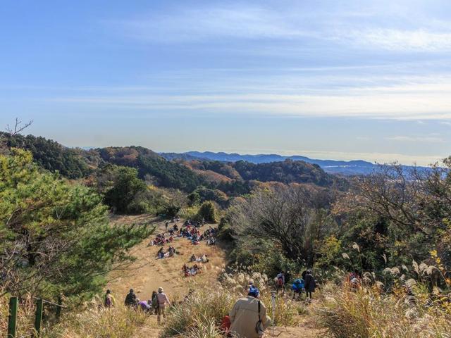 関東日帰りハイキング初級~中級コースおすすめ20選!目的別に紹介